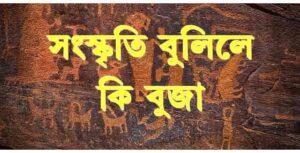 সংস্কৃতি বুলিলে কি বুজা