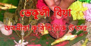 ভেকুলী বিয়া